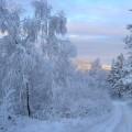 Зимняя сказка Словакии
