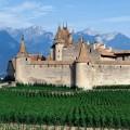 Замок d'Aigle