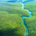 Brazil - Amazon